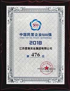 Chinese Leading Renewable Energy Pioneers Top 100 (Top Solar mounting system System Brand) in 2018